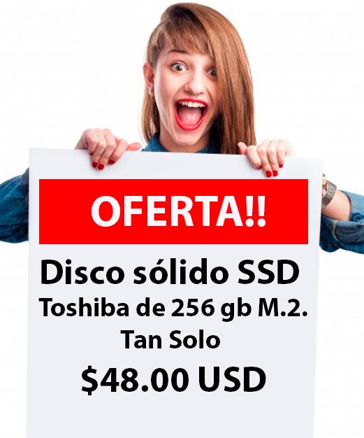 Disco Solido Toshiba Quito 256 GB